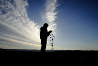 Silhouette man holding sunflower on field against cloudy sky 11100075015| 写真素材・ストックフォト・画像・イラスト素材|アマナイメージズ
