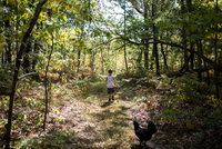 Rear view of boy hiking amidst trees in forest 11100075222| 写真素材・ストックフォト・画像・イラスト素材|アマナイメージズ