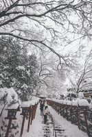 Low angle view of tourists climbing snow covered steps at Kifune Shrine 11100076456| 写真素材・ストックフォト・画像・イラスト素材|アマナイメージズ