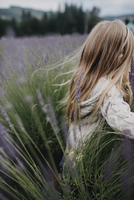 Carefree girl with blond hair amidst lavender field 11100078898| 写真素材・ストックフォト・画像・イラスト素材|アマナイメージズ