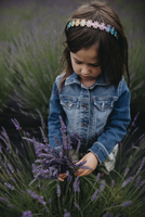 High angle view of girl holding lavenders while standing on field 11100078899| 写真素材・ストックフォト・画像・イラスト素材|アマナイメージズ