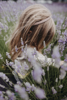 Carefree girl with blond hair playing amidst lavender field 11100078901| 写真素材・ストックフォト・画像・イラスト素材|アマナイメージズ