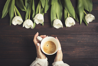 Cropped hands of woman holding coffee cup by tulips on wooden table 11100080080| 写真素材・ストックフォト・画像・イラスト素材|アマナイメージズ