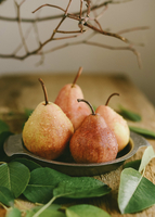 Close-up of wet pears in plate with leaves on wooden table 11100090424| 写真素材・ストックフォト・画像・イラスト素材|アマナイメージズ