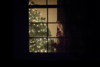 Smiling siblings standing by illuminated Christmas tree at home seen through window 11100091816| 写真素材・ストックフォト・画像・イラスト素材|アマナイメージズ