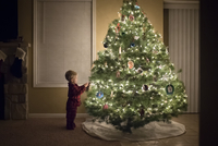 Side view of boy standing by illuminated Christmas tree at home 11100091817| 写真素材・ストックフォト・画像・イラスト素材|アマナイメージズ