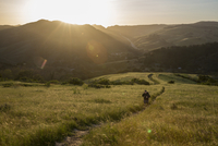 High angle view of man on trail amidst grassy field against mountains during sunset 11100092127| 写真素材・ストックフォト・画像・イラスト素材|アマナイメージズ