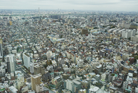 Aerial view of buildings in city 11100094232| 写真素材・ストックフォト・画像・イラスト素材|アマナイメージズ