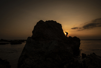 Silhouette child climbing on rock at beach against sky during sunset 11100101410| 写真素材・ストックフォト・画像・イラスト素材|アマナイメージズ