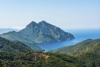 Forested mountains on the coast, Gulf of Porto, Corsica 11102000622| 写真素材・ストックフォト・画像・イラスト素材|アマナイメージズ