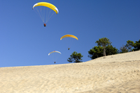 Hang gliders over Dune du Pyla, Bay of Arcachon, Cote d'Argent, Gironde, Aquitaine 11104002869| 写真素材・ストックフォト・画像・イラスト素材|アマナイメージズ