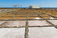 Salt pans still in use at El Carmen Salinas and Salt Museum on the east coast, Caleta de Fuste, Fuerteventura, Canary Islands 11104009855| 写真素材・ストックフォト・画像・イラスト素材|アマナイメージズ