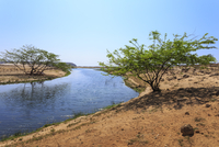 Tranquil waters of Khor Rori (Rouri), Land of Frankincense , near Salalah, Dhofar Region, Oman, Middle East 11104014075| 写真素材・ストックフォト・画像・イラスト素材|アマナイメージズ