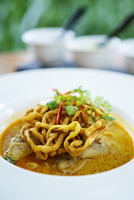 Crispy noodles and Thai curry, Chiang Mai, Thailand, Southeast Asia 11104014562| 写真素材・ストックフォト・画像・イラスト素材|アマナイメージズ