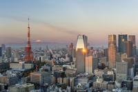 Elevated evening view of the city skyline and iconic Tokyo Tower, Tokyo, Japan, Asia 11104026000| 写真素材・ストックフォト・画像・イラスト素材|アマナイメージズ