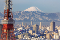 Elevated view of the city skyline and iconic Tokyo Tower, Tokyo, Japan, Asia 11104026004| 写真素材・ストックフォト・画像・イラスト素材|アマナイメージズ