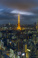 Elevated night view of the city skyline and iconic illuminated Tokyo Tower, Tokyo, Japan, Asia 11104026006| 写真素材・ストックフォト・画像・イラスト素材|アマナイメージズ