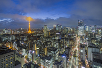 Elevated night view of the city skyline and iconic illuminated Tokyo Tower, Tokyo, Japan, Asia 11104026012| 写真素材・ストックフォト・画像・イラスト素材|アマナイメージズ