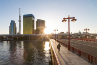 City skyline and the Skytree on the Sumida River at dawn, Tokyo, Japan, Asia 11104026014| 写真素材・ストックフォト・画像・イラスト素材|アマナイメージズ