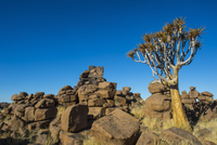 Unusual rock formations, Giant's Playground, Keetmanshoop, Namibia, Africa 11104027480| 写真素材・ストックフォト・画像・イラスト素材|アマナイメージズ