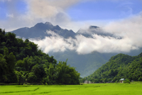 Thatched cottages and rice paddy fields with misty mountains behind, Mai Chau, Vietnam, Indochina, Southeast Asia, Asia 11104029233| 写真素材・ストックフォト・画像・イラスト素材|アマナイメージズ