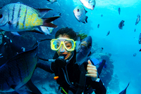 Close-up Of Woman Scuba Diving In Great Barrier Reef 11115000613| 写真素材・ストックフォト・画像・イラスト素材|アマナイメージズ