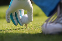 Cropped Image Of Person Placing Golf Ball On Tee 11115004344| 写真素材・ストックフォト・画像・イラスト素材|アマナイメージズ