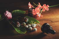 Close-up Of Medicines And Herbs On Table 11115027232| 写真素材・ストックフォト・画像・イラスト素材|アマナイメージズ