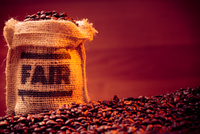 Close-up Of Roasted Coffee Beans With Sack Against Maroon Background 11115036715| 写真素材・ストックフォト・画像・イラスト素材|アマナイメージズ