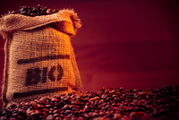 Close-up Of Roasted Coffee Beans With Sack Against Maroon Background 11115036716| 写真素材・ストックフォト・画像・イラスト素材|アマナイメージズ