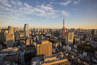 Tokyo Tower Amidst Buildings In City Against Sky During Sunset 11115041508| 写真素材・ストックフォト・画像・イラスト素材|アマナイメージズ