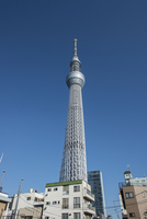 Low Angle View Of Tokyo Sky Tree Against Clear Blue Sky 11115051258| 写真素材・ストックフォト・画像・イラスト素材|アマナイメージズ