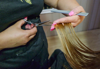Midsection Of Hairdresser Cutting Woman Hair In Salon