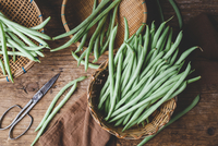 High Angle View Of Green Beans In Basket On Table 11115081057| 写真素材・ストックフォト・画像・イラスト素材|アマナイメージズ