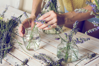 Midsection Of Florist Arranging Lavender Flowers In Jar On Table 11115087291| 写真素材・ストックフォト・画像・イラスト素材|アマナイメージズ