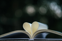 Close-up Of Papers In Heart Shape On Book