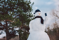 Low Angle View Of Snowman Against Trees