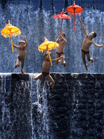 Boys Jumping With Umbrellas Against Waterfall