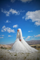 Smiling Bride Standing On Field Against Blue Sky 11115155603| 写真素材・ストックフォト・画像・イラスト素材|アマナイメージズ