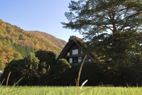 Wada House in Shirakawa village; World Heritage Area