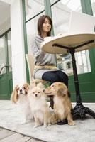 カフェに座る女性と犬 28204000031| 写真素材・ストックフォト・画像・イラスト素材|アマナイメージズ