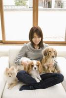 ソファでくつろぐ女性と犬 28204000035| 写真素材・ストックフォト・画像・イラスト素材|アマナイメージズ