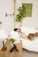 ベッドで眠る女性と犬 28204000038| 写真素材・ストックフォト・画像・イラスト素材|アマナイメージズ