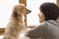 見つめあう女性と犬 28204000040| 写真素材・ストックフォト・画像・イラスト素材|アマナイメージズ