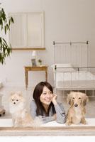 窓辺にくつろぐ女性と犬 28204000042| 写真素材・ストックフォト・画像・イラスト素材|アマナイメージズ