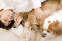 犬と女性のリラックスタイム 28204000069| 写真素材・ストックフォト・画像・イラスト素材|アマナイメージズ