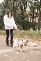 犬と散歩中の女性 28204000071| 写真素材・ストックフォト・画像・イラスト素材|アマナイメージズ
