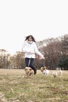 犬と散歩中の女性 28204000098| 写真素材・ストックフォト・画像・イラスト素材|アマナイメージズ