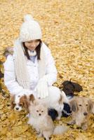 落ち葉の上に座る女性と犬 28204000108| 写真素材・ストックフォト・画像・イラスト素材|アマナイメージズ
