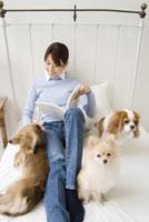 ベッドでくつろぐ犬と女性 28204000128| 写真素材・ストックフォト・画像・イラスト素材|アマナイメージズ